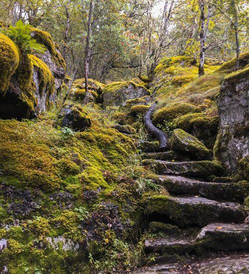 Preciosa escalera de piedra para llegar a Husedalen Waterfalls