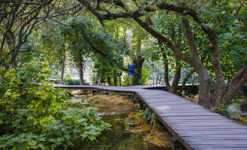 Cruce de pasarelas entre los árboles en el parque Nacional Krka