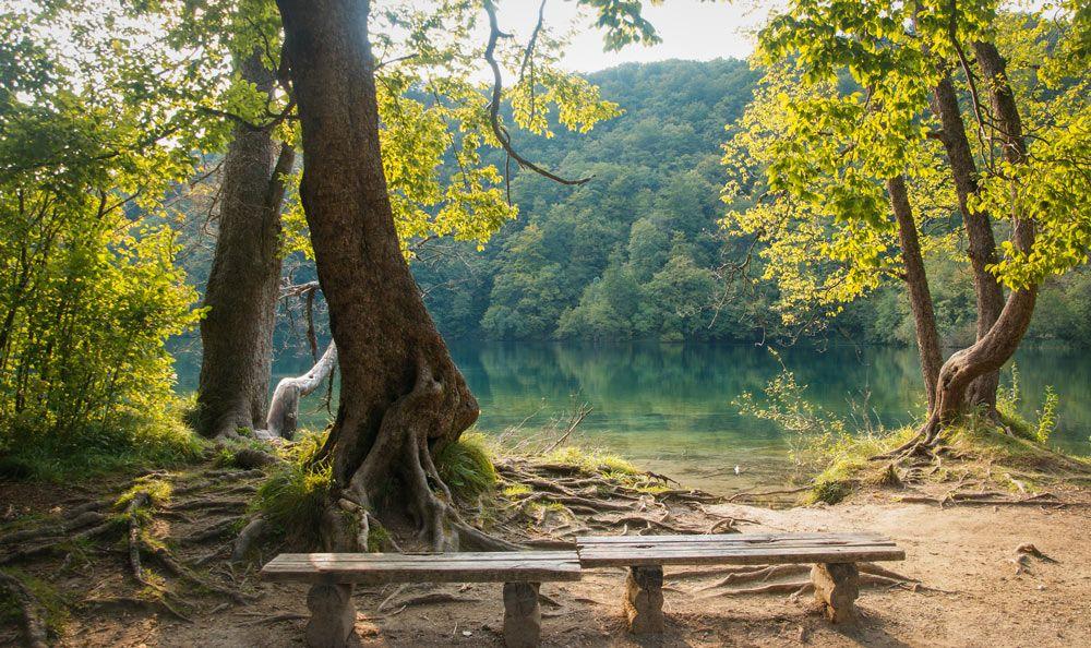 Bancos de madera debajo de los árboles y enfrente de uno de los lagos del parque Plitvice