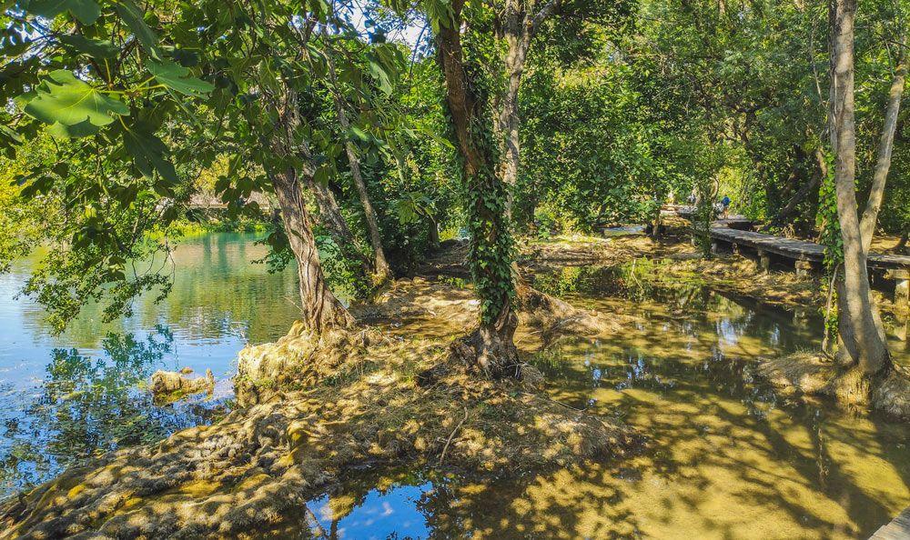 Lagunas y árboles del Parque Nacional de Krka en Croacia