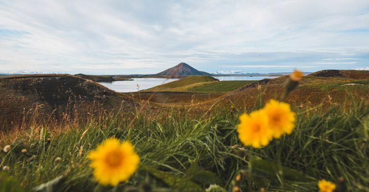 La primavera es uno de los mejores momentos para saber cuándo ir en Islandia